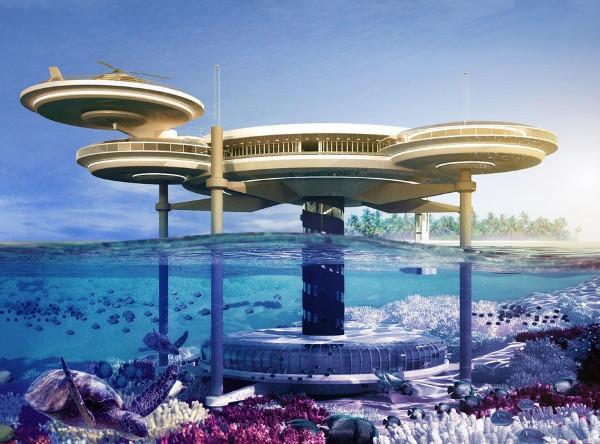 Dubai Discus Underwater