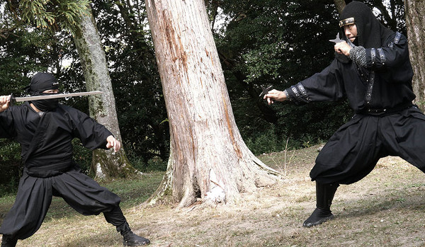 Ninjutsu Martial Arts from Japan