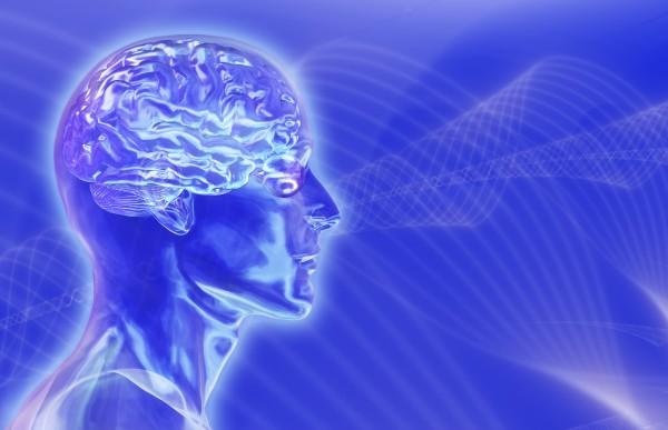 REM Behavior Sleep Disorder