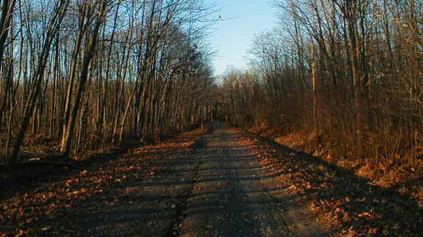 Boy Scout Lane United States