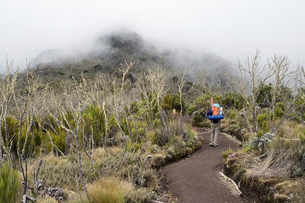 Mount Kilimanjaro to Marangu Tanzania