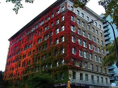 Sylvia Hotel in Canada Changes Color with Season