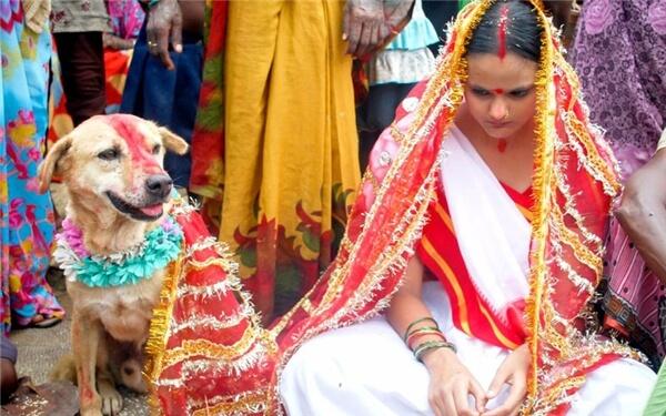 Woman Marrying Animal